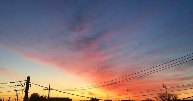 Dawn0225.jpg